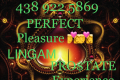 Erotic Massage in Longueuil: PROSTATE(BEST ORGASM) DILDO VIBR. LINGAM MAGIC TOUCH